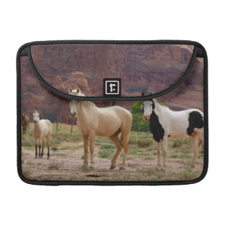 Arizona, Navajo Indian Reservation, Chinle, Sleeves For MacBook Pro