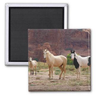 Arizona, Navajo Indian Reservation, Chinle, Magnet