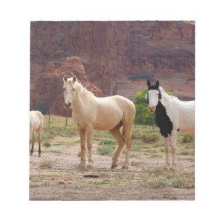 Arizona, Navajo Indian Reservation, Chinle, Notepad