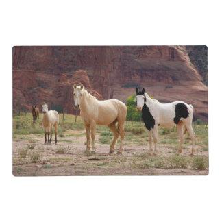 Arizona, Navajo Indian Reservation, Chinle, Laminated Place Mat