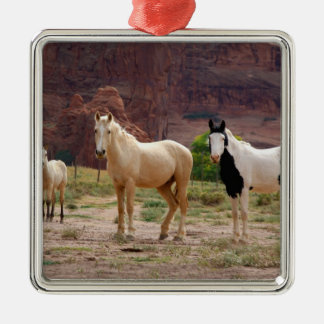 Arizona, Navajo Indian Reservation, Chinle, Ornaments