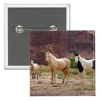 Arizona, Navajo Indian Reservation, Chinle, Pinback Button