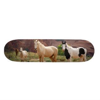 Arizona, Navajo Indian Reservation, Chinle, Skateboard Deck
