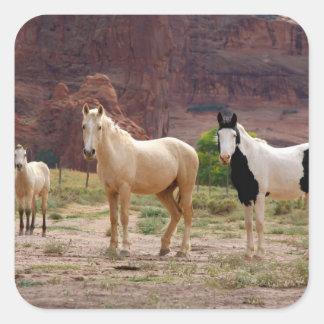 Arizona, Navajo Indian Reservation, Chinle, Square Sticker
