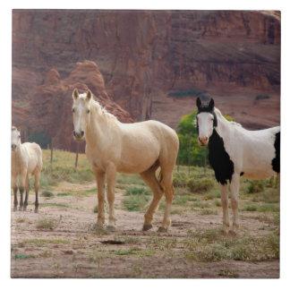 Arizona, Navajo Indian Reservation, Chinle, Tile