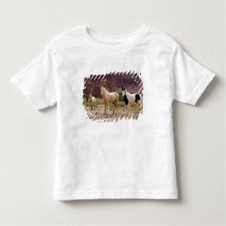 Arizona, Navajo Indian Reservation, Chinle, Toddler T-shirt