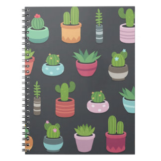 Arizona Notebook