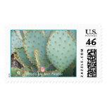 Arizona / Phoenix / Prickley Pear Cactus Postage