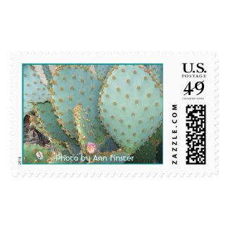 Arizona / Phoenix / Prickley Pear Cactus Stamp