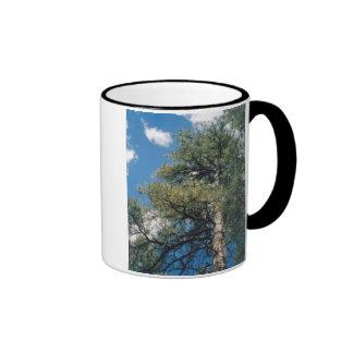 Arizona Pine Ringer Mug