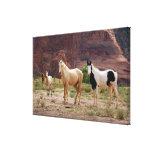 Arizona, reserva india de Navajo, Chinle, Impresiones En Lienzo Estiradas