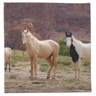 Arizona, reserva india de Navajo, Chinle, Servilleta