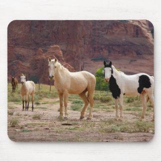 Arizona, reserva india de Navajo, Chinle, Tapetes De Raton