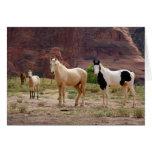 Arizona, reserva india de Navajo, Chinle, Tarjeta De Felicitación