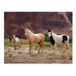 Arizona, reserva india de Navajo, Chinle, Tarjetas Postales