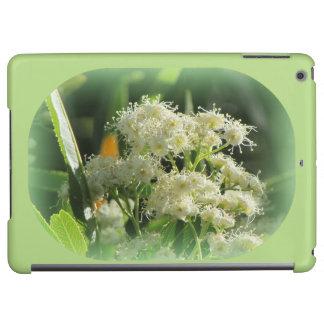 Arizona Rosewood Blooms iPad Air Covers