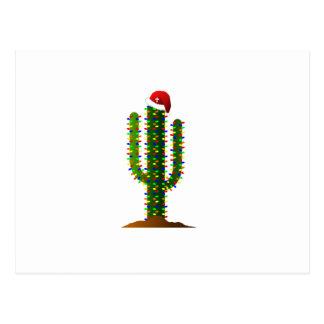 Arizona Saguaro Cactus Christmas Lights Postcard