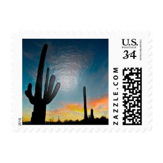 Arizona Saguaro Cactus  Sunset Plastic 3d Art Stamp