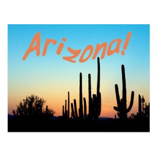 Arizona! Saguaro Sunset Postcard
