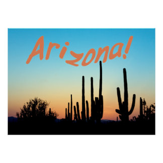 Arizona! Saguaro Sunset Poster