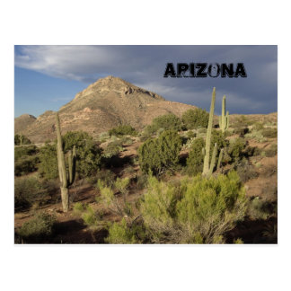 Arizona Scenic Postcard
