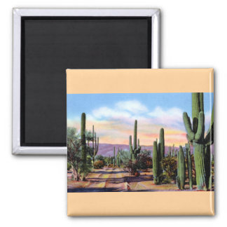 Arizona Sonoran Desert Scene Magnets