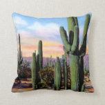 Arizona Sonoran Desert Scene Pillow