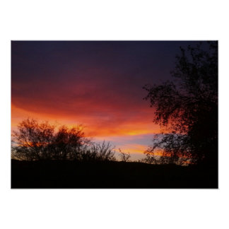 Arizona Sonoran Desert Sunset 21 x 15 Poster