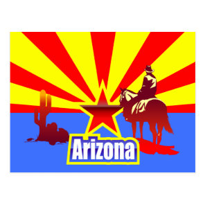 Arizona State Flag Vintage Drawing Postcard