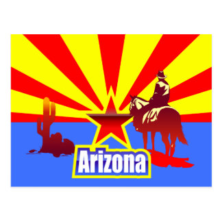 Arizona State Flag Vintage Drawing Postcard