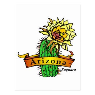 Arizona State Flower - Saguaro Postcard