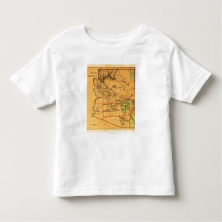 Arizona TerritoryPanoramic MapArizona Camisetas