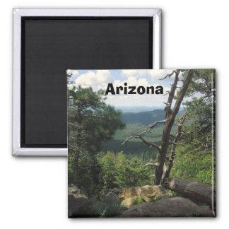 Arizona Views Refrigerator Magnets