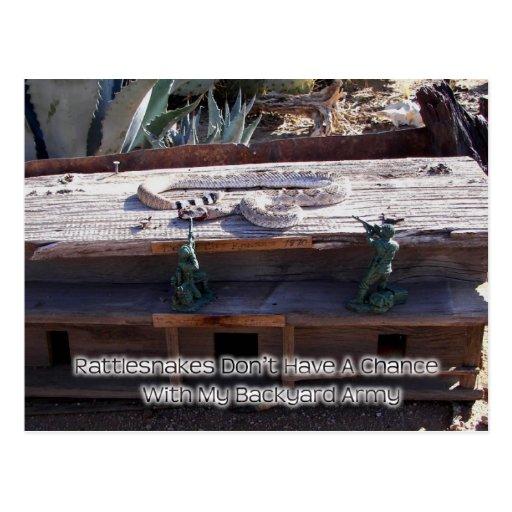 Arizona Western Diamondback Rattlesnake Postcard