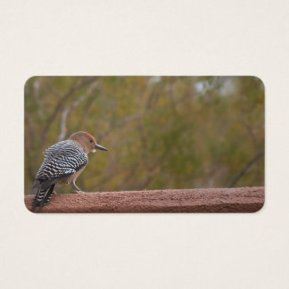 Arizona Woodpecker Business Cards