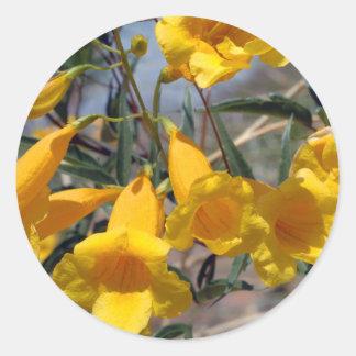 Arizona Yellow Bells Round Sticker
