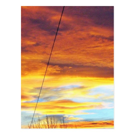 Ark Orange Sky At Sunset Postcard