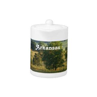 Arkansas Countryside