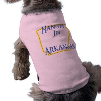 Arkansas - Hangin' Tee