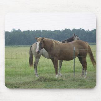 Arkansas Horses Mouse Pad