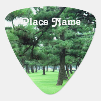 Arkansas Landscape Guitar Pick