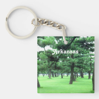 Arkansas Landscape Single-Sided Square Acrylic Keychain