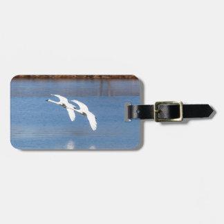 Arkansas Trumpeter Swans Luggage Tag