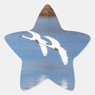 Arkansas Trumpeter Swans Star Sticker