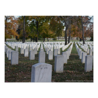 Arlington Cemetery Fall 2013 Headstones Poster