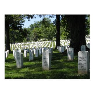 Arlington Cemetery Postcard
