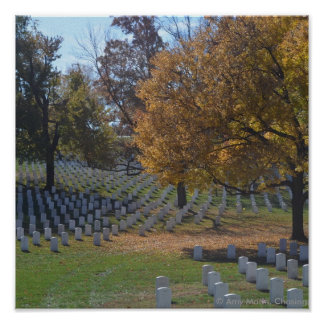 Arlington en otoño poster