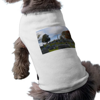 Arlington Fall, Obelisk on top of the hill T-Shirt