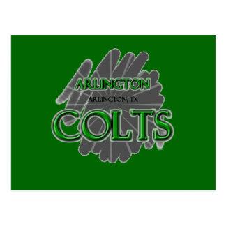 Arlington High School Colts - Arlington, TX Postcard