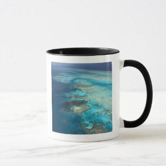 Arlington Reef, Great Barrier Reef Marine Park, Mug